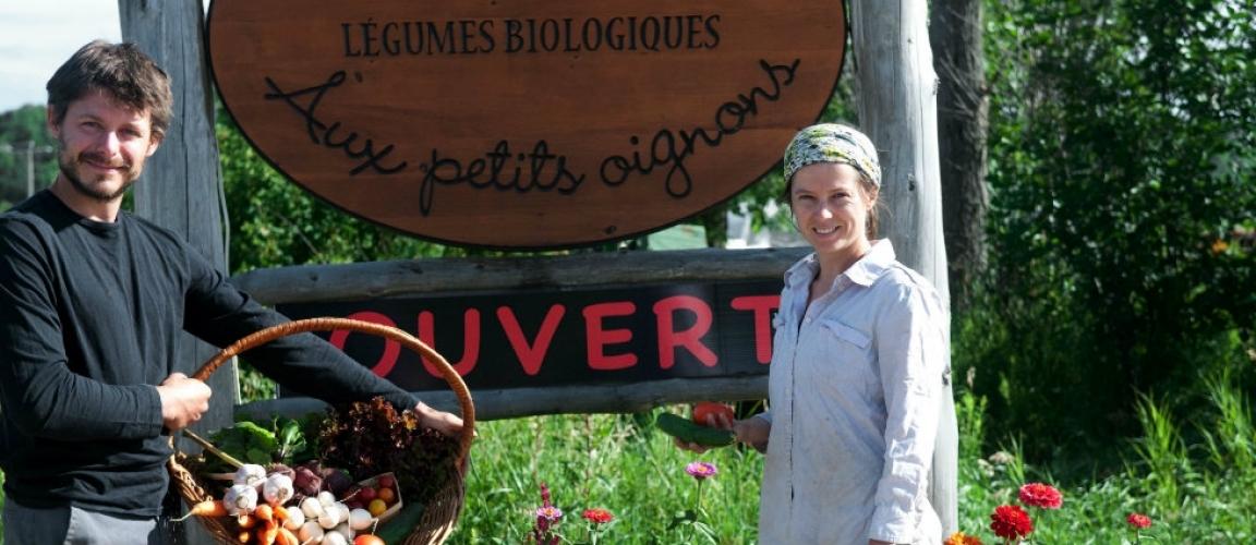 Ferme-petits-oignons-Francois_vero